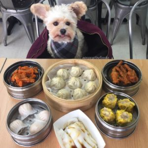 The_Dim_Sum_Co Collab_with_Popeyethefoodie